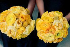 Bridesmaid's Round Yellow  Bouquets: English Garden Roses, Ranunculus, Craspedia