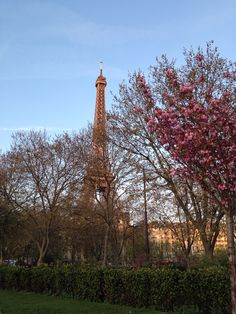 April in Paris #photobyizabrandt