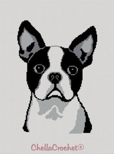 Boston Terrier crochet pattern by chellacrochet @ Etsy Crochet Afghans, Crochet C2c, Boston Terriers, Terrier Puppies, Bulldog Puppies, Afghan Crochet Patterns, Cross Stitch Patterns, Afghan Stitch, Graph Design