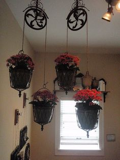 planters hanging from vintage pulley