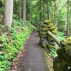 9 Easy Hikes Around Buffalo You'll Want To Knock Off Your Summer Bucket List Outside Activities, Summer Activities, Letchworth State Park, Autumn Park, Colorado Hiking, County Park, Summer Bucket Lists, Best Hikes, Day Hike
