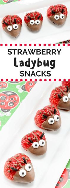 These adorable chocolate covered strawberry ladybugs are the perfect treat for your next summer party!