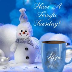 Have a terrific Tuesday everyone! It's my birthday, so I'm very excited for today 🎂.