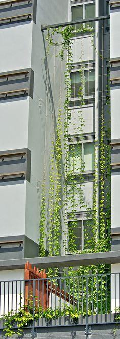 Circa Dos Apartments, Queensland | Innovative Rigging Systems. An excellent…