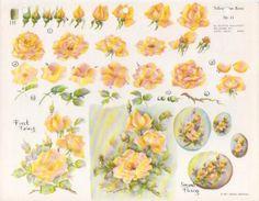 Gladys Galloway China Painting Study No 11 Yellow Open Roses Instructions   eBay