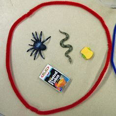 ASSESSMENT: This activity is a fun way to formally or informally assess students' understanding of letter sounds. Students have different familiar items and must sort the items into two sound circles depending on the first letter sound. For example, they may sort items such as snakes, spiders, and cars into the /s/ and /k/ sound circles.