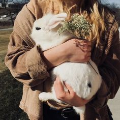 le lapin blanc the white rabbit Animals And Pets, Baby Animals, Cute Animals, Cute Creatures, Beautiful Creatures, Cat Dog, Cute Kittens, Animal Kingdom, Fur Babies