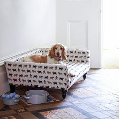 This very chipper spaniel is relaxing on a smart daybed designed by Sofa.com in collaboration with textiles designer Fenella Smith. In aid of Dogs Trust, the brand has covered its new 'Cecil' dogbed in a range of canine-themed fabrics created by Smith, who also sells her own range of ceramics for the charity.