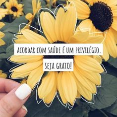 43 Ideas Quotes Vida Frases Happy For 2019 Faith Quotes, Sad Quotes, Happy Quotes, Words Quotes, Love Quotes, Phrase Of The Day, Tumblr Boy, Travel Words, Friday Humor