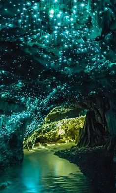 Waitomo glow worm caves, New Zealand. Waitomo Glow worm Caves, New Zealand. Glow worm cave, New Zealand. The walls glitter with glow worms in the dark, like a night sky Beautiful Places In The World, Places Around The World, Amazing Places, Beautiful Things, Wonderful Places, Peaceful Places, Beautiful Scenery, Amazing Things, Beautiful Landscapes