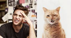 Des Hommes et des Chatons - Robert Pattinson (Twilight)