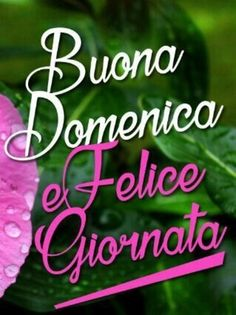 Belle Whatsapp Domenica 00252 Italian Proverbs, Foto Gif, Italian Life, Italian Quotes, Good Morning Good Night, Emoticon, Beautiful Words, Birthday Cards, Advent