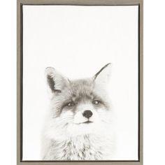 DSOV Sylvie 'Fox Portrait' by Simon Te Tai Framed Photographic Print on Wrapped Canvas