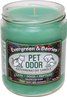 Pet Products By Royal - Pet Odor Exterminator Candle -  Evergreen