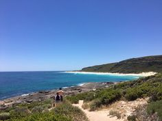 Another beautiful day in @MargaretRiver #thisiswa #travel @Australia www.parkmyvan.com.au #ParkMyVan #Australia #Travel #RoadTrip #Backpacking #VanHire #CaravanHire
