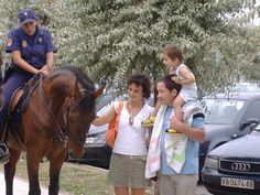 HORSE LOOK