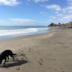Check out Onaero Beach, a peaceful, secluded spot in Northern Taranaki, New Zealand http://townske.com/article/469/onaero-beach-new-zealand