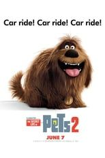The Secret Life of Pets 2 « Film Complet en Streaming VF - Stream Complet Gratis # # Fast And Furious, Pete Holmes, Dana Carvey, Secret Life Of Pets, 2 Movie, Streaming Vf, Universal Pictures, Movies, Animation Movies