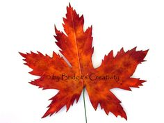 My paper leaves Paper Leaves, Leaf Template, Autumn Leaves, Quilling, Creative, Bedspreads, Fall Leaves, Autumn Leaf Color, Quilting