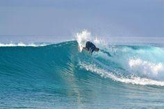 Qamea Resort and Spa Fiji » Surfing