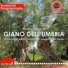 Museo diffuso di Giano dell'Umbria: Ulivimmortali, pietre castellane e viaggiatori del tempo.