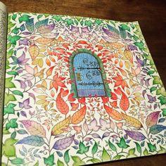 2個目❗️ 秘密の扉 #大人の塗り絵 #秘密の花園 #coloriage #secretgarden