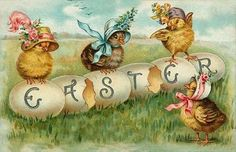baby chicks in their easter bonnets