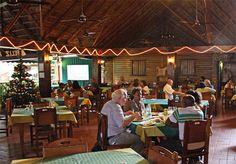 Situado en el corazón de Miramar, El Aljibe es uno de los restaurantes más emblemáticos de comida criolla en La Habana y el favorito de la comunidad diplomática que trabaja en la zona.  El espacio está decorado con estilo campestre, con grandes ranchones, muy ventilados y agradables.