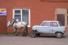 Real horse power :-)