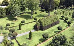 Extraordinary living Tree Church in New Zealand seats 100 people
