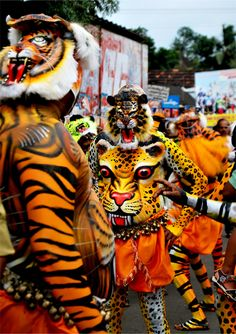 Pulikali ( Tiger Dance ) of Kerala.  Pulikali is a rural art form which is about 200 years old. The make-up for the show is a painstaking affair with the artists getting themselves ready from the late hours of the night.