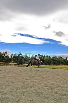 Building a horse riding arena - Thinking outside the rectangle - Horsetalk - equestrian features on training, horse care, equine breeding and more