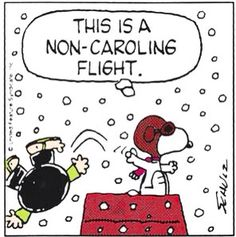 Charlie Brown and Snoopy Funny Christmas Ornaments, Days To Christmas, Peanuts Christmas, Charlie Brown Christmas, Charlie Brown And Snoopy, Christmas Countdown, Christmas Humor, Christmas Cartoons, Christmas Stuff