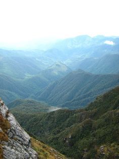 Laderas del Parque nacional natural Farallones de Cali. Es una de las 56 áreas protegidas del sistema de Parques Nacionales Naturales de Colombia y una de las más antiguas, creada en 1968. Es igualmente una de las más importantes áreas protegidas del país, ya que por hallarse dentro de la zona del Chocó biogeográfico es una de las más diversas faunísticamente. Se encuentra situado en el departamento del Valle del Cauca.