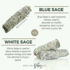 ZODIAC SEASON: What you need to know about sage burning and There Health Benefits from Burning Sage Healing Herbs, Holistic Healing, Natural Healing, Soul Healing, Chakra Healing, Smudging Prayer, Sage Smudging, Wiccan Spells, Witchcraft