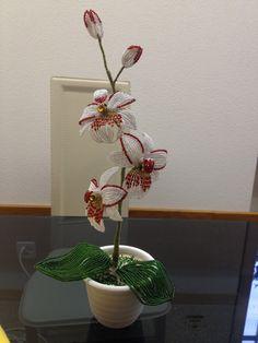 Blumen aus Perlen. Orchidee, Teil 1/5. Flowers out of beads. Anna's Perlen.