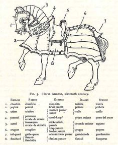 16th century horse armor diagram, part names in each country #amwriting