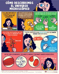 De comerciante a padre de la microbiología: en su cumpleaños recordamos a Antoni van Leeuwenhoek, el primero en ver el universo microscópico