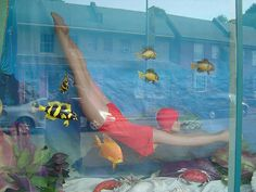Carytown Window 3 by scooterdome, via Flickr