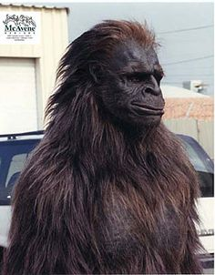 Bigfoot Specialty Costume by McAvene Designs & 58 best BigFoot Costumes images on Pinterest | Bigfoot costume Baby ...
