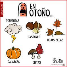 Vocabulario español básico: las cosas del Otoño: tormentas, castañas, hojas secas, calabazas y setas ---- Spanish vocabulary: Autumn / Faal things: storms, chestnuts, dried leaves, pumpkins and mushrooms