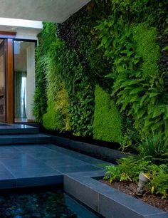 muro verde medianera cochera--