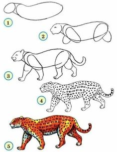 How to Draw Zoo Animals Easily : Draw wildlife animals - leopard Art Drawings For Kids, 3d Drawings, Drawing For Kids, Art For Kids, Drawing Ideas, Easy Animals, Zoo Animals, Draw Animals, Drawing Lessons