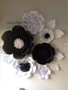 Black white pinwheel backdroppaper rosette backdropwall covering paper flowers backdrop 6 black and white by sydneypaperflowers mightylinksfo