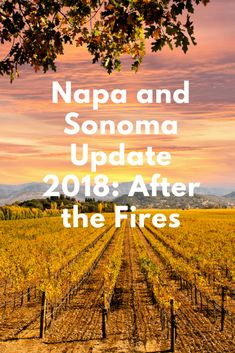 Depending on where your Wine Country adventure takes you in Napa and Sonoma, you may not see the fire scars. Sonoma Wineries, Napa Valley Wineries, Napa Sonoma, Sonoma Valley, Sonoma County, Napa Winery, San Diego, San Francisco, Sonoma California