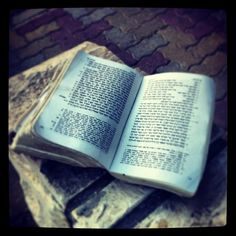Someone left a bible behind...