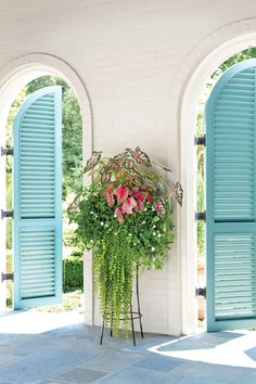 "Made for Shade - 122 Container Gardening Ideas - Southernliving. A simple-to-follow formula is all you need to create drama in a container. Here, it takes only four plants to convey the sweeping illusion of a floor-length gown. The key to pulling this off is starting with an elevated planter so the vibrant ""Celebration"" and ""Florida Sweetheart"" caladiums pop at eye level. Clusters of white wishbone flower fill the empty spaces between the caladium stems and also conceal the actual…"