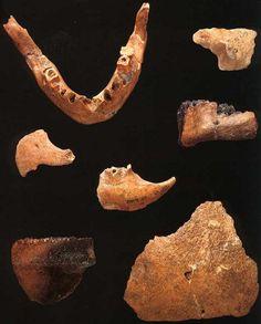 Hallazgos en la cueva Klasies Meat, Caves, Historia