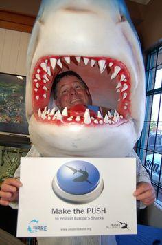 Curtis Irving - Langley Diving #SharkAlliance #MakethePush
