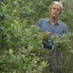 Eliot Coleman (20:33) - Blueberries, Raspberries, Strawberries, and how to plant them...